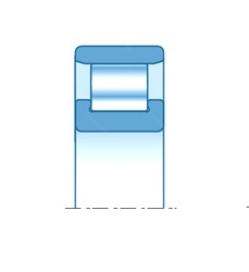 95,000 mm x 170,000 mm x 32,000 mm  SNR N219EG15 cylindrical roller bearings