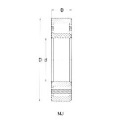 95 mm x 170 mm x 32 mm  Loyal NJ219 cylindrical roller bearings