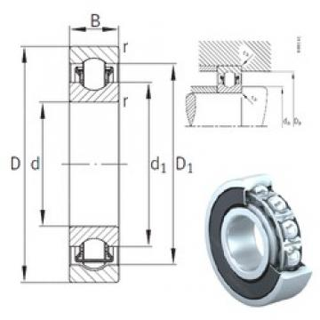 45 mm x 75 mm x 16 mm  INA BXRE009-2RSR needle roller bearings