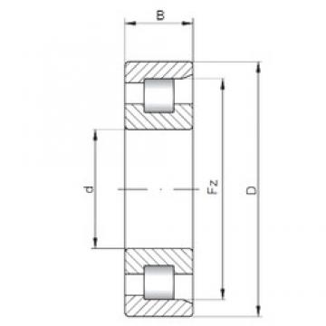 150 mm x 320 mm x 65 mm  Loyal NF330 E cylindrical roller bearings