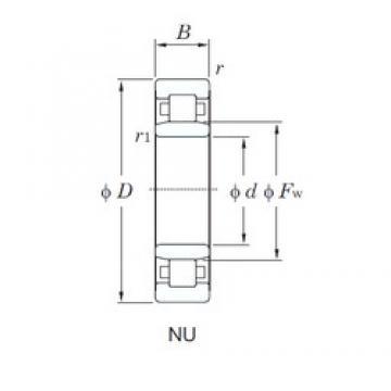 95 mm x 170 mm x 32 mm  KOYO NU219R cylindrical roller bearings