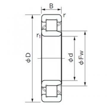 220 mm x 460 mm x 88 mm  NACHI NJ 344 cylindrical roller bearings