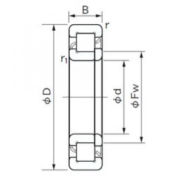 220 mm x 460 mm x 88 mm  NACHI NUP 344 cylindrical roller bearings
