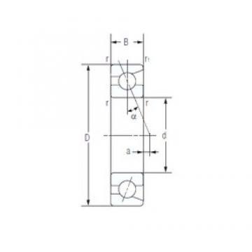 95 mm x 170 mm x 32 mm  NACHI 7219AC angular contact ball bearings