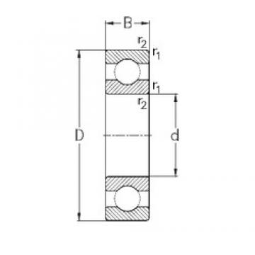 95 mm x 170 mm x 32 mm  NKE 6219 deep groove ball bearings