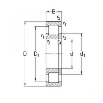 110 mm x 200 mm x 53 mm  NKE NUP2222-E-MPA cylindrical roller bearings