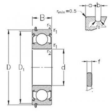 95 mm x 170 mm x 32 mm  NKE 6219-2Z-NR deep groove ball bearings