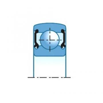 10,000 mm x 30,000 mm x 9,000 mm  NTN CS200LLU deep groove ball bearings