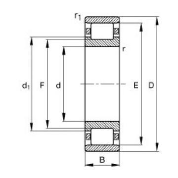 150 mm x 320 mm x 65 mm  FAG N330-E-M1 cylindrical roller bearings
