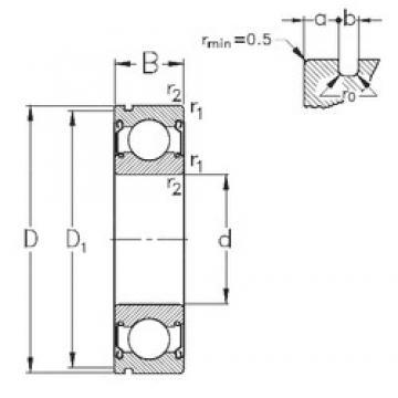 45 mm x 75 mm x 16 mm  NKE 6009-2Z-N deep groove ball bearings