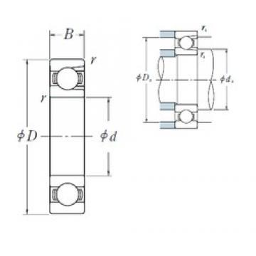 95 mm x 170 mm x 32 mm  NSK BL 219 deep groove ball bearings