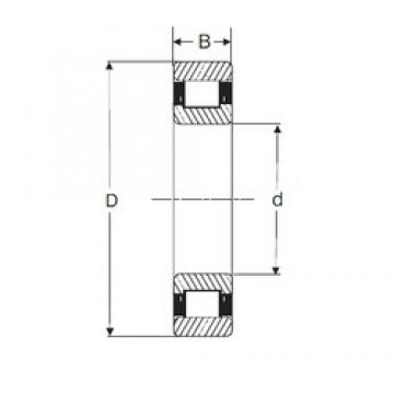 95 mm x 200 mm x 45 mm  SIGMA N 319 cylindrical roller bearings