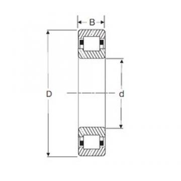 110 mm x 200 mm x 53 mm  SIGMA NUP 2222 cylindrical roller bearings