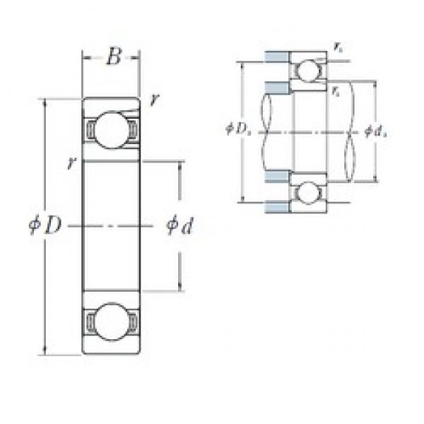 95 mm x 170 mm x 32 mm  NSK BL 219 deep groove ball bearings #1 image